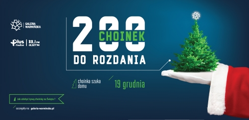 200 CHOINEK DO ROZDANIA
